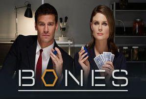 ボーンズの動画を1番お得に視聴できる配信サービスとは?